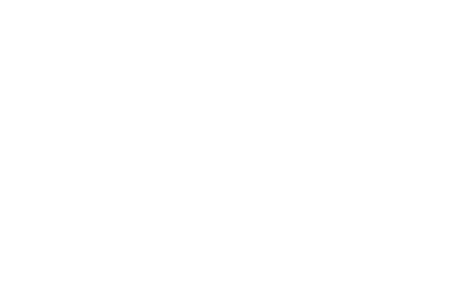 Spark Your Visual Story logo